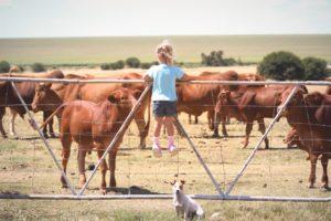 nachhaltige Farm in Amerika